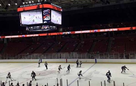 """Hockey Fans are """"Fearing the Ears"""" as the Swamp Rabbits Come to Greenville"""