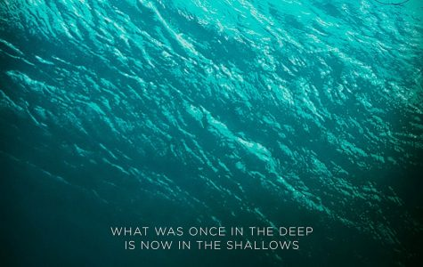 """Movie Review: """"The Shallows"""" Sinks in Box Office"""
