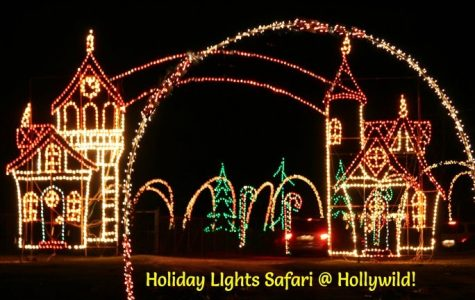 Hollywild Brings Christmas Lights to Animal Park