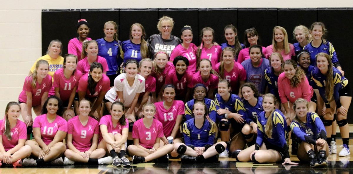 Dig+Pink%3A+The+Greer+Volleyball+Fundraiser